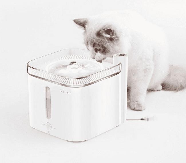 Пример использования дозатора воды для животных PETKIT Smart Water Dispenser 2